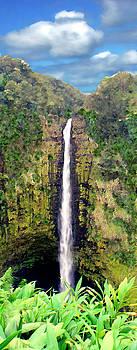 Kurt Van Wagner - Akaka Falls Big Island Hawaii
