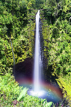 Akaka Falls Hawaii by Joe Belanger