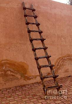 Al Ain Ladder by Barbara Von Pagel