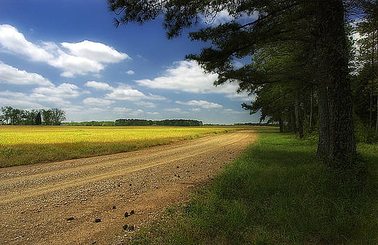 Alabama dirt road by Earl Carter