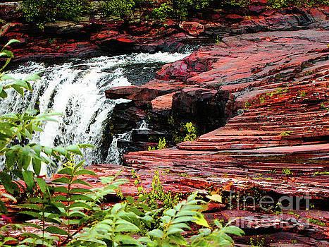 Alabama Falls  by Ron Tackett