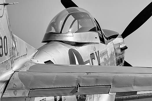Alabama Rammer Jammer - 2017 Christopher Buff, www.Aviationbuff.com by Chris Buff