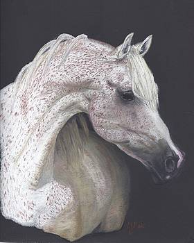 Alabaster Speckles by Caren Moak-khan