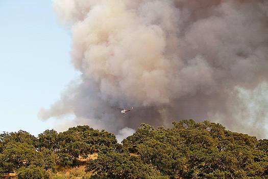 Art Block Collections - Alamo Wildfire in California