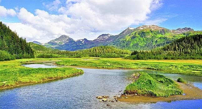 Alaska Bush by Mark Lemon