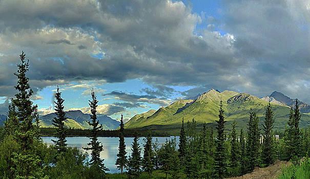 Alaska Midnight Sun by Carl Sheffer