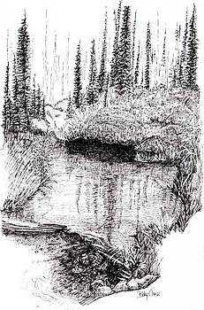 Alaska Pond by Betsy Carlson Cross