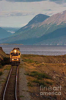 Alaska Railroad by Bernita Boyse