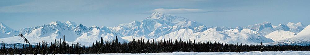 Alaska Range by Jeannette Reddington