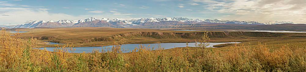 Alaska Range by Peter J Sucy