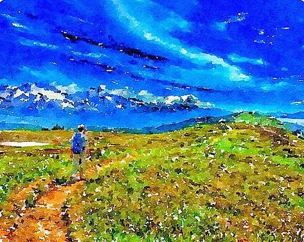 Alaska Walk by Wade Binford