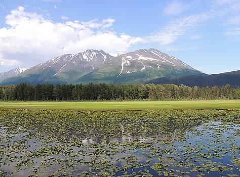 Alaskan Mountain Genuflection by Red Cross