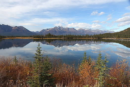 Reflections At Alaska's Mentasta Lake by Steve Wolfe