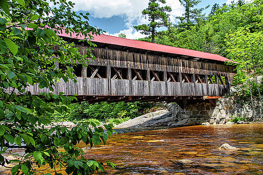 Albany Covered Bridge  by Betty Pauwels