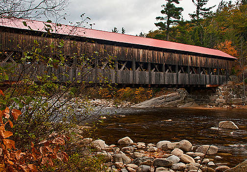 Albany Covered Bridge by Nancy De Flon