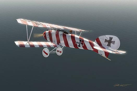 Albatros D.III of Jasta 11 by David Collins
