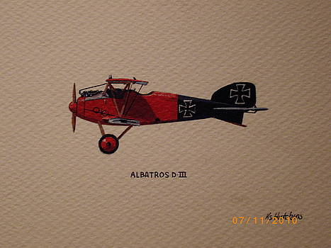Albatross D3 by Keith Hutchins