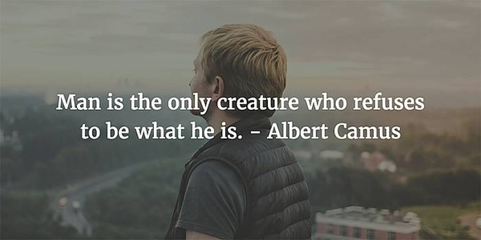 Albert Camus Quote by Matt Create
