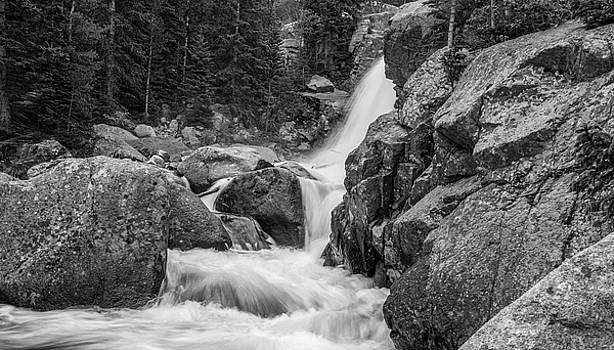 Alberta Falls In Black And White by Michael Putthoff