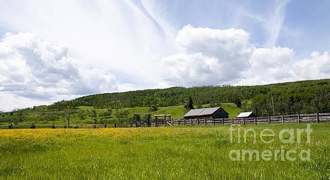Vivian Christopher - Alberta Foothills Barn