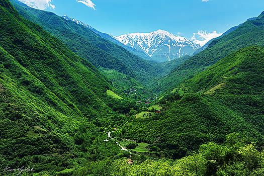 Alborz Green by Mohsen Kamalzadeh