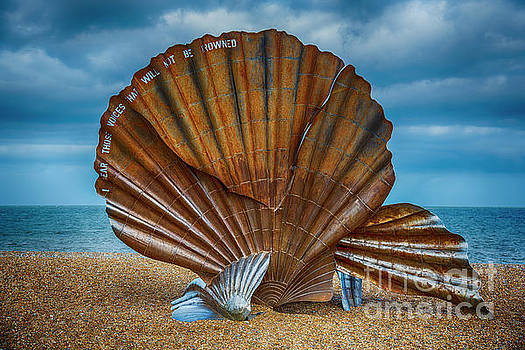 Aldeburgh Scallop Shell by Chris Thaxter