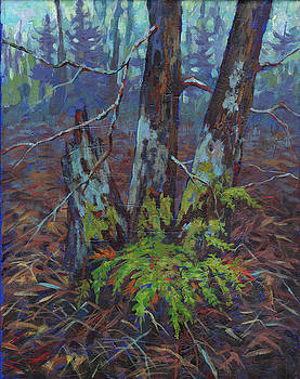Alders with Ferns by Peggy Wilson