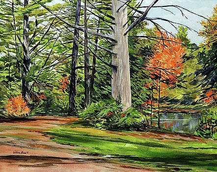 Algonquin Quiet Place by William Band