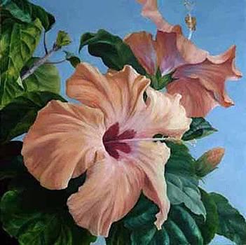 Alice's Hibiscus by Rita-Anne Piquet