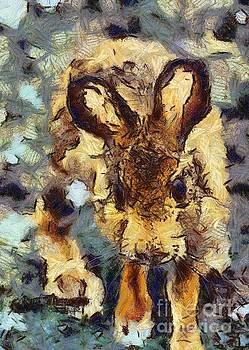 Rod Wiens - Alien Rabbit