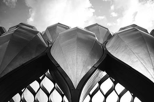 Alien Skies by Nate Heldman