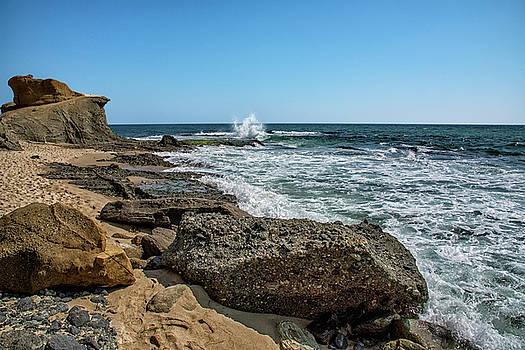 Aliso Beach by Steven Michael