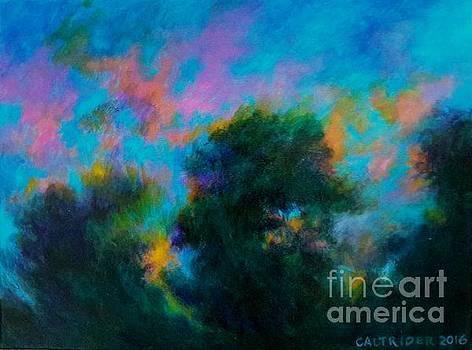 Alison's Dream Time  by Alison Caltrider