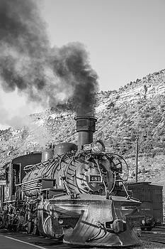 All Aboard by Colleen Coccia