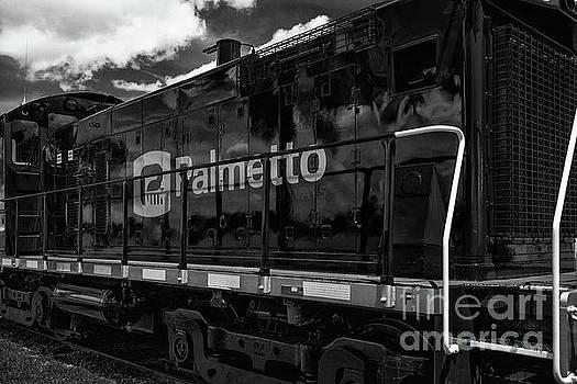 Dale Powell - All Aboard Palmetto Railways