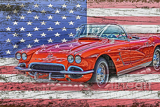 All American Beauty by Judy Hall-Folde