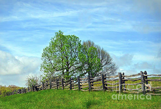 All Fenced In Along the Blue Ridge Parkway by Kerri Farley