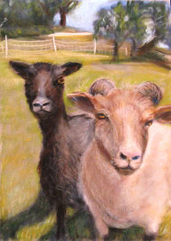 All Fenced in by Wendie Thompson