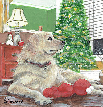 All I Want For Christmas by Janis Cornish