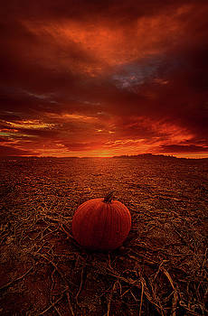 All That's Left To Do Is Wait by Phil Koch