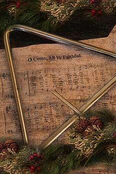 All Ye Faithful by Robin-Lee Vieira