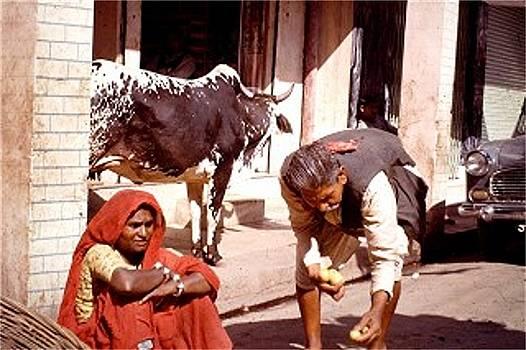 Allahabad, India by Barron Holland