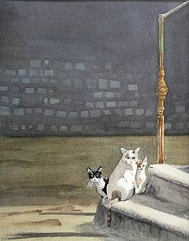 Alley Cats - Gatti Randaggi by Mimi Boothby