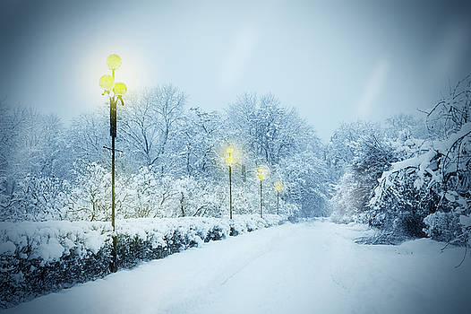 Alley covered with snow by Iuliia Malivanchuk by Iuliia Malivanchuk