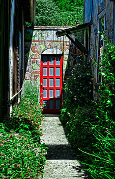 Alley Door by Robert Brusca