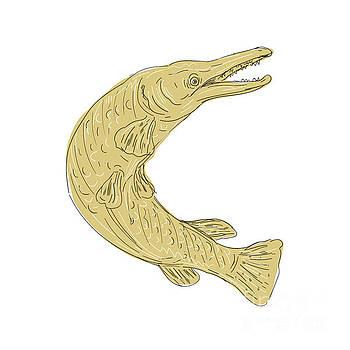 Alligator Gar Fish Swimming Up Drawing by Aloysius Patrimonio