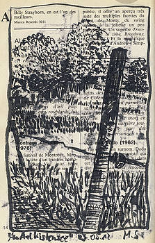 Martin Stankewitz - Aalkistensee Maulbronn,trees and fence posts
