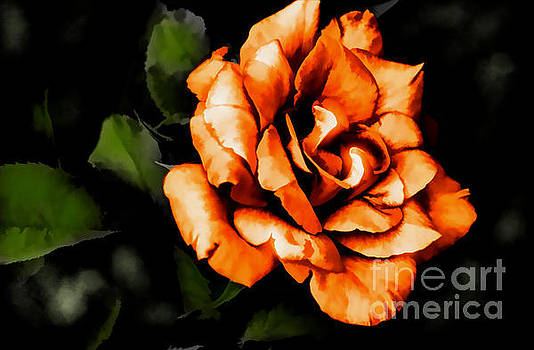 Allure by Diana Mary Sharpton