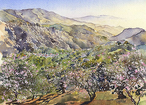Almond Blossom in Guajar Alto by Margaret Merry