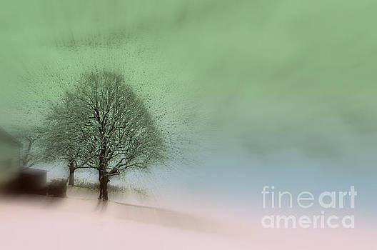 Susanne Van Hulst - Almost a dream - Winter in Switzerland
